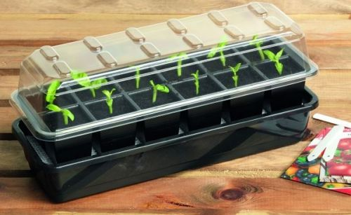 12 Cell Self Watering Seed Success Kit Propagator
